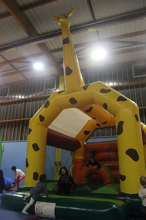 chateau girafe